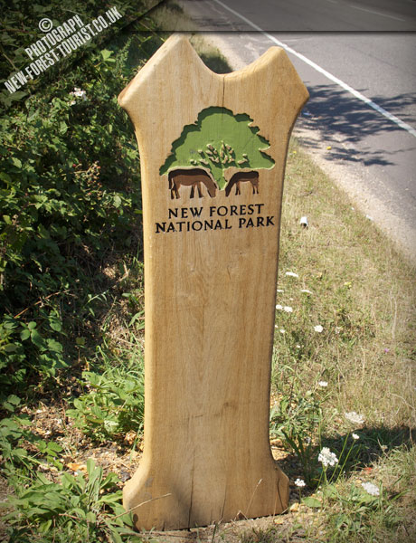 The New Forest National Park Boundary Marker at 36 Applemore
