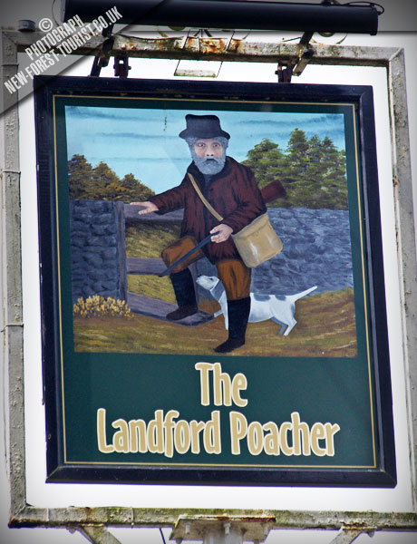 The New Forest pub: The Landford Poacher