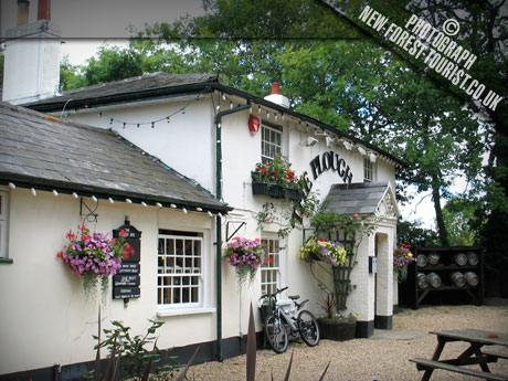 The New Forest National Park pub: The Plough Inn