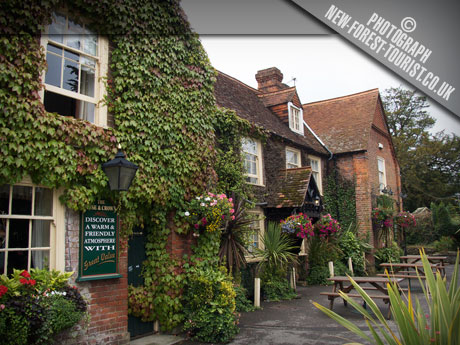 The New Forest National Park pub: Rose & Crown