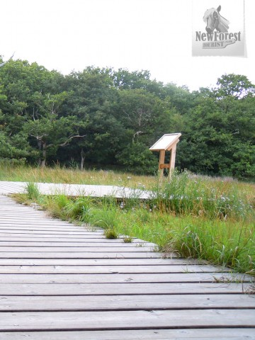 Beaulieu River Boardwalk and Information Panel