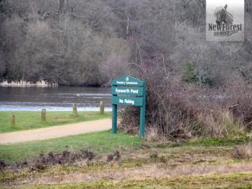 Eyeworth Pond Car Park