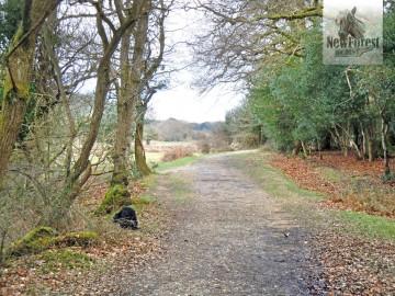 Track from Eyeworth Pond