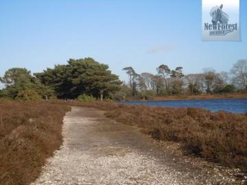 The path alongside Hatchet Pond