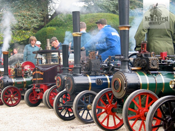 Miniature traction engines at Exbury