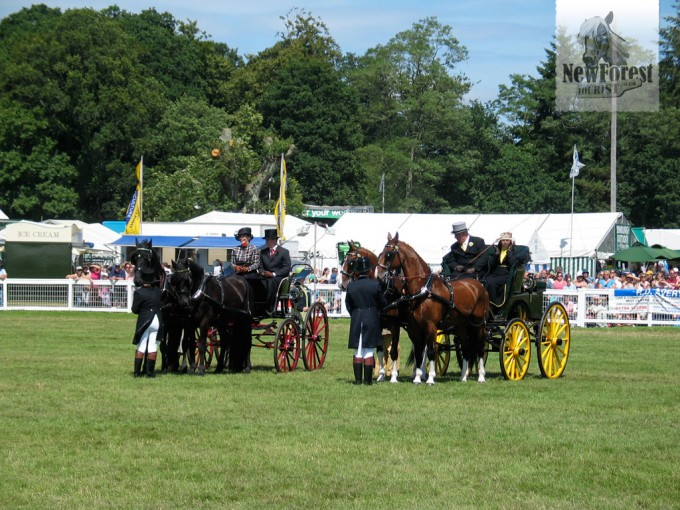 The New Forest Show