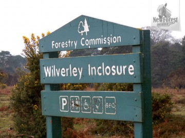 Wilverley Inclosure Car Park
