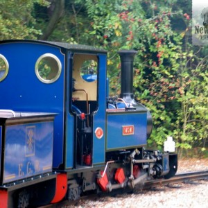 Exbury Steam Railway