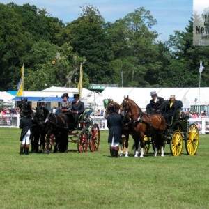 The New Forest Show, New Park