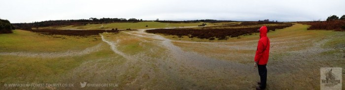 Waterlogged Longslade Heath
